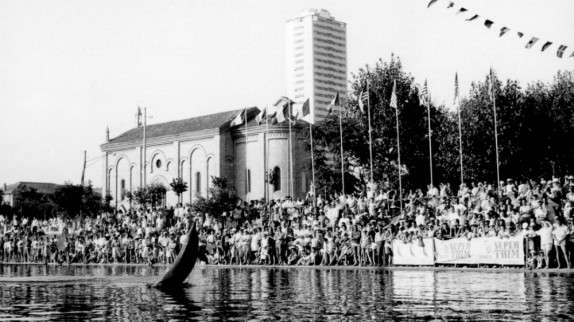 Delfini a Cesenatico - archivio Nanni
