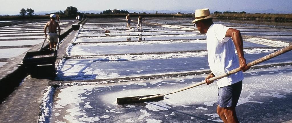 Sulla rotta del sale - La riserva del Camillone